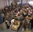 Banco alimentar - Centro de recolha de alimentos